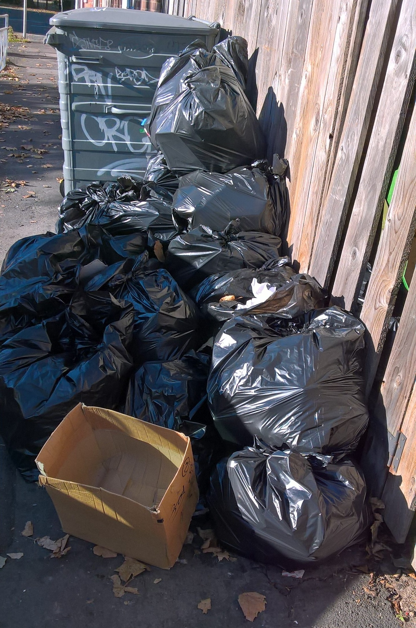 Bags of rubbish from Lucca in Princes Avenue.